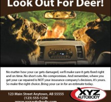 Look out for Deer Print Ad