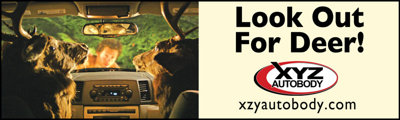 Look Out for Deer Billboard